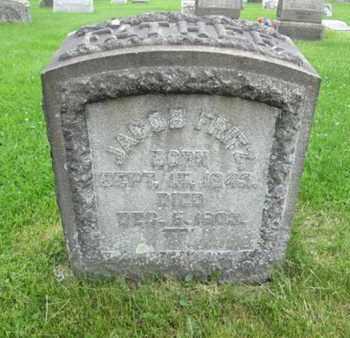 FRITZ (CW), JACOB - Northampton County, Pennsylvania | JACOB FRITZ (CW) - Pennsylvania Gravestone Photos