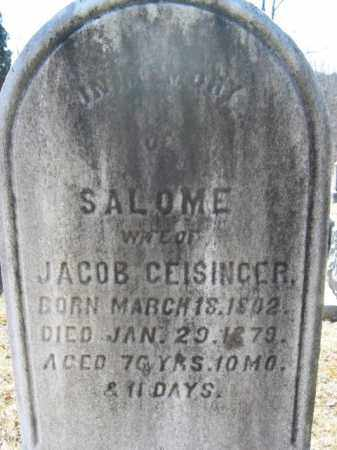 GEISINGER, SALOME - Northampton County, Pennsylvania | SALOME GEISINGER - Pennsylvania Gravestone Photos