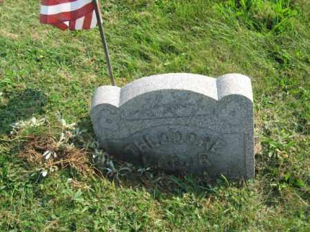 LABAR (CW), THEODORE - Northampton County, Pennsylvania   THEODORE LABAR (CW) - Pennsylvania Gravestone Photos