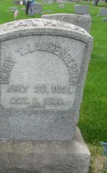 LAUDENBERGER (CW), HENRY T. - Northampton County, Pennsylvania | HENRY T. LAUDENBERGER (CW) - Pennsylvania Gravestone Photos