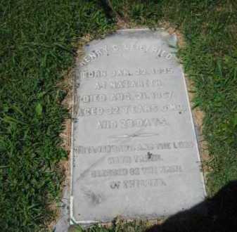 LEIBFRIED, HENRY   C. - Northampton County, Pennsylvania   HENRY   C. LEIBFRIED - Pennsylvania Gravestone Photos