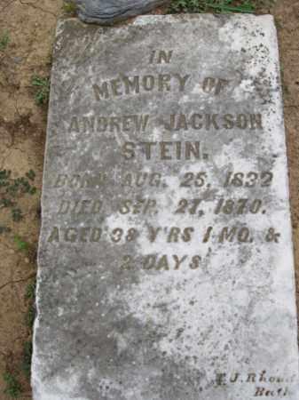 STEIN, ANDREW JACKSON - Northampton County, Pennsylvania | ANDREW JACKSON STEIN - Pennsylvania Gravestone Photos