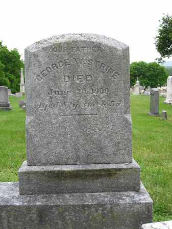 STRINE, GEORGE - Northumberland County, Pennsylvania | GEORGE STRINE - Pennsylvania Gravestone Photos