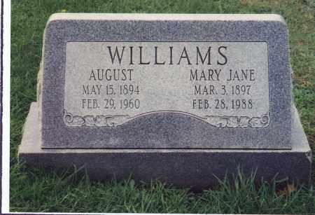 WILSON WILLIAMS, MARY JANE - Northumberland County, Pennsylvania | MARY JANE WILSON WILLIAMS - Pennsylvania Gravestone Photos