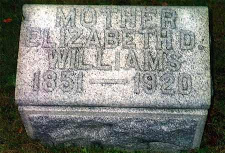 WILLIAMS, ELIZABETH - Northumberland County, Pennsylvania | ELIZABETH WILLIAMS - Pennsylvania Gravestone Photos