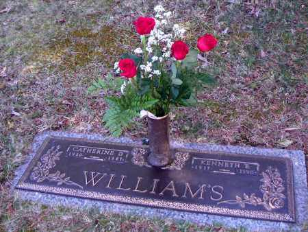 WILLIAMS, CATHERINE DAW - Northumberland County, Pennsylvania | CATHERINE DAW WILLIAMS - Pennsylvania Gravestone Photos