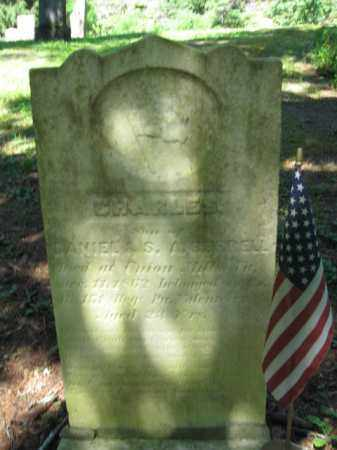 BURRELL (CW), CHARLES - Pike County, Pennsylvania   CHARLES BURRELL (CW) - Pennsylvania Gravestone Photos