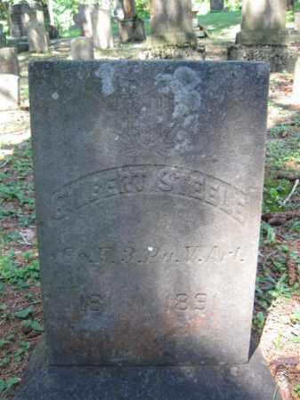 STEELE (CW), GILBERT - Pike County, Pennsylvania | GILBERT STEELE (CW) - Pennsylvania Gravestone Photos