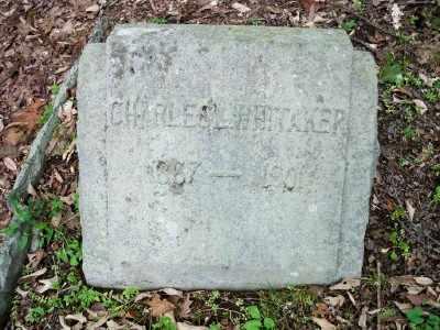 WHITAKER, CHARLES L. - Pike County, Pennsylvania | CHARLES L. WHITAKER - Pennsylvania Gravestone Photos