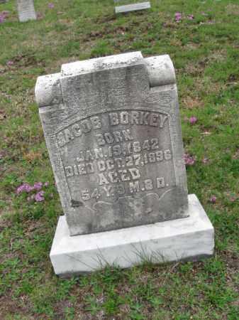BORKEY, JACOB - Schuylkill County, Pennsylvania | JACOB BORKEY - Pennsylvania Gravestone Photos