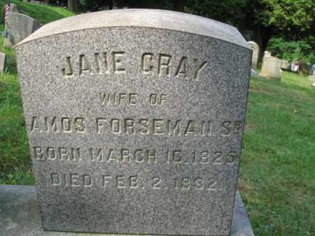 GRAY FORSEMAN, JANE - Schuylkill County, Pennsylvania | JANE GRAY FORSEMAN - Pennsylvania Gravestone Photos