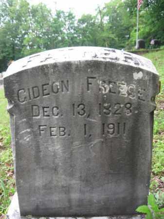 FREESE, GIDEON - Schuylkill County, Pennsylvania | GIDEON FREESE - Pennsylvania Gravestone Photos