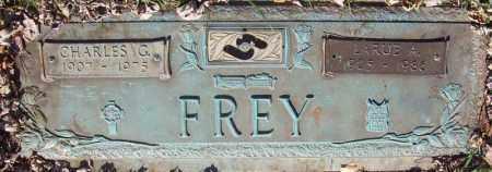 FREY, CHARLES G. - Schuylkill County, Pennsylvania | CHARLES G. FREY - Pennsylvania Gravestone Photos