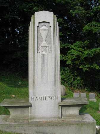 HAMILTON, WILLIAM T. - Schuylkill County, Pennsylvania | WILLIAM T. HAMILTON - Pennsylvania Gravestone Photos