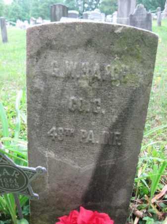 HATCH (CW), GEORGE W. - Schuylkill County, Pennsylvania | GEORGE W. HATCH (CW) - Pennsylvania Gravestone Photos
