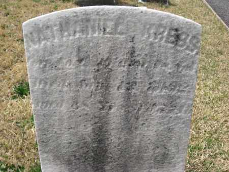 KREBS, NATHANIEL - Schuylkill County, Pennsylvania | NATHANIEL KREBS - Pennsylvania Gravestone Photos