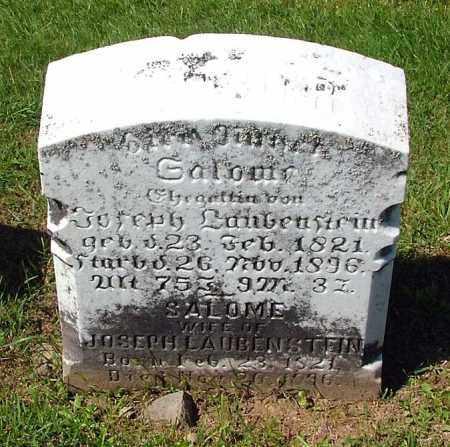 LAUBENSTEIN, SALOME - Schuylkill County, Pennsylvania   SALOME LAUBENSTEIN - Pennsylvania Gravestone Photos