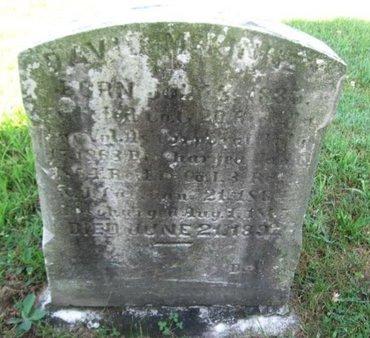 MCKINNEY (CW), DAVID - Schuylkill County, Pennsylvania | DAVID MCKINNEY (CW) - Pennsylvania Gravestone Photos