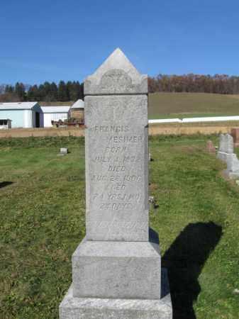 MESIMER, FRANCIS - Schuylkill County, Pennsylvania   FRANCIS MESIMER - Pennsylvania Gravestone Photos