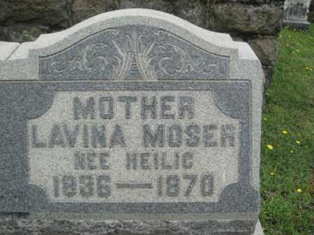 MOSER, LAVINA - Schuylkill County, Pennsylvania | LAVINA MOSER - Pennsylvania Gravestone Photos