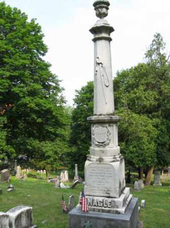 NAGLE (CW), GEN.JAMES - Schuylkill County, Pennsylvania | GEN.JAMES NAGLE (CW) - Pennsylvania Gravestone Photos