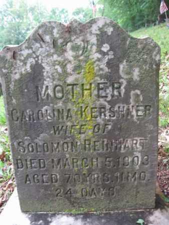 KERSHNER REINHART, CAROLINA - Schuylkill County, Pennsylvania | CAROLINA KERSHNER REINHART - Pennsylvania Gravestone Photos