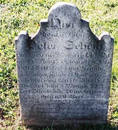 SCHEIB, PETER - Schuylkill County, Pennsylvania | PETER SCHEIB - Pennsylvania Gravestone Photos