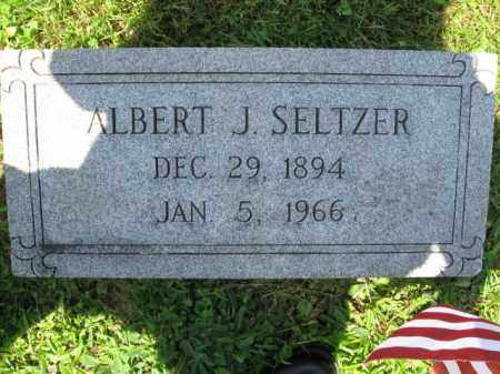 SELTZER, ALBERT J. - Schuylkill County, Pennsylvania | ALBERT J. SELTZER - Pennsylvania Gravestone Photos
