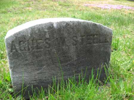 STEELE, AGNES W. - Schuylkill County, Pennsylvania   AGNES W. STEELE - Pennsylvania Gravestone Photos