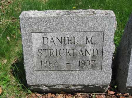 STRICKLAND, DANIEL M. - Susquehanna County, Pennsylvania | DANIEL M. STRICKLAND - Pennsylvania Gravestone Photos