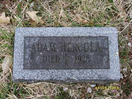 HERCULA, ADAM - Tioga County, Pennsylvania | ADAM HERCULA - Pennsylvania Gravestone Photos