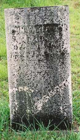 WALDRON, JOHN - Tioga County, Pennsylvania | JOHN WALDRON - Pennsylvania Gravestone Photos