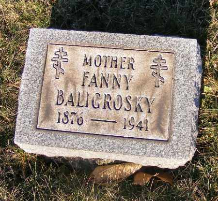 BALIGROSKY, FANNY - Washington County, Pennsylvania | FANNY BALIGROSKY - Pennsylvania Gravestone Photos