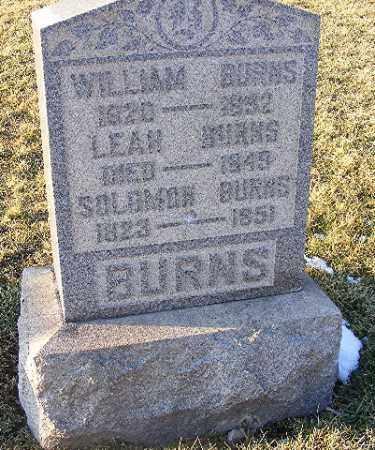 BURNS, SOLOMON - Washington County, Pennsylvania | SOLOMON BURNS - Pennsylvania Gravestone Photos