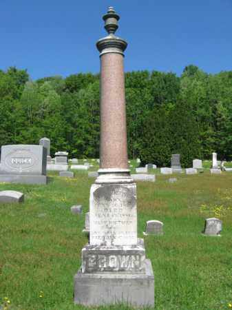 BROWN, HENRY T. - Wyoming County, Pennsylvania | HENRY T. BROWN - Pennsylvania Gravestone Photos