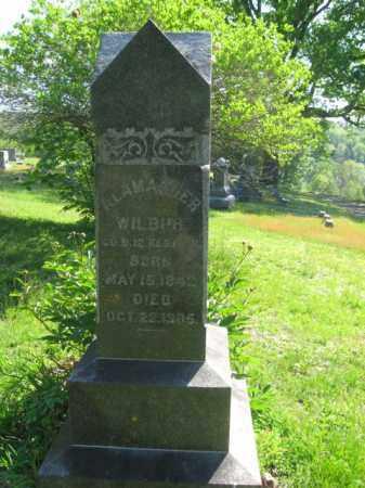 WILBUR (CW), ALAMANDER - Wyoming County, Pennsylvania | ALAMANDER WILBUR (CW) - Pennsylvania Gravestone Photos