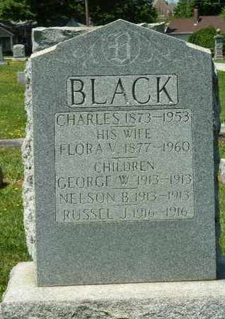 BLACK, GEORGE W. - York County, Pennsylvania | GEORGE W. BLACK - Pennsylvania Gravestone Photos
