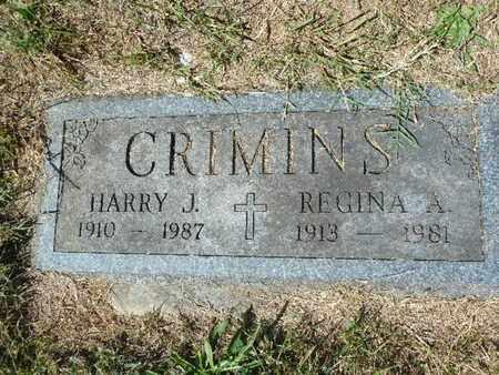 CRIMINS, REGINA A - York County, Pennsylvania | REGINA A CRIMINS - Pennsylvania Gravestone Photos