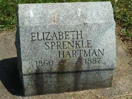 HARTMAN, ELIZABETH - York County, Pennsylvania | ELIZABETH HARTMAN - Pennsylvania Gravestone Photos