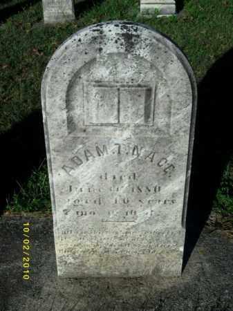 NACE, ADAM T - York County, Pennsylvania | ADAM T NACE - Pennsylvania Gravestone Photos