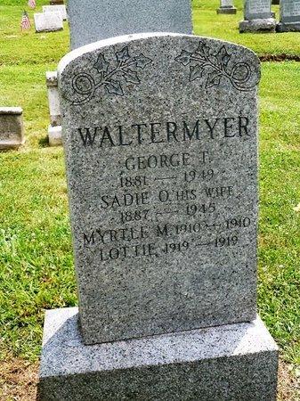 WALTERMYER, GEORGE T - York County, Pennsylvania | GEORGE T WALTERMYER - Pennsylvania Gravestone Photos