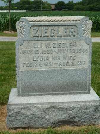 ZIEGLER, LYDIA - York County, Pennsylvania   LYDIA ZIEGLER - Pennsylvania Gravestone Photos