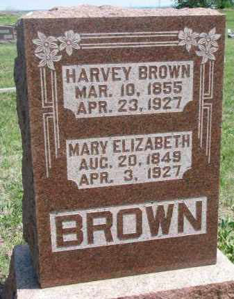 BROWN, HARVEY - Bon Homme County, South Dakota | HARVEY BROWN - South Dakota Gravestone Photos