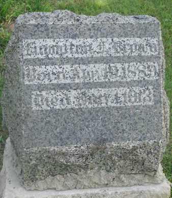 BROWN, HAMPTON - Bon Homme County, South Dakota | HAMPTON BROWN - South Dakota Gravestone Photos