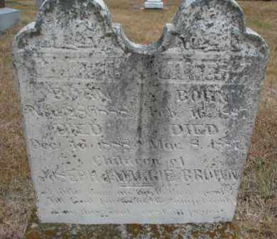 BROWN, MARY I. - Bon Homme County, South Dakota   MARY I. BROWN - South Dakota Gravestone Photos