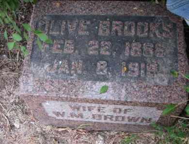 BROWN, OLIVE - Bon Homme County, South Dakota | OLIVE BROWN - South Dakota Gravestone Photos