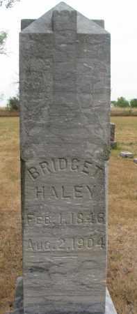 HALEY, BRIDGET - Bon Homme County, South Dakota | BRIDGET HALEY - South Dakota Gravestone Photos
