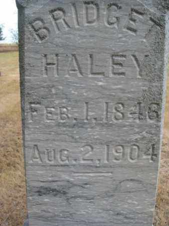 HALEY, BRIDGET (CLOSEUP) - Bon Homme County, South Dakota | BRIDGET (CLOSEUP) HALEY - South Dakota Gravestone Photos