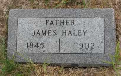 HALEY, JAMES - Bon Homme County, South Dakota   JAMES HALEY - South Dakota Gravestone Photos