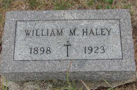 HALEY, WILLIAM M. - Bon Homme County, South Dakota | WILLIAM M. HALEY - South Dakota Gravestone Photos